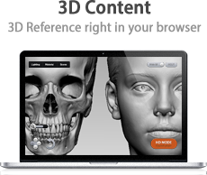 3D Content: 3D Regerence right in your browser