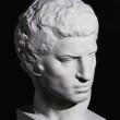 Brutus_3a